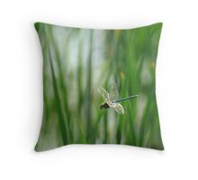 051509-18   DRAGONFLY  III Throw Pillow