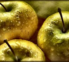 Golden Apples by Sheri Nye