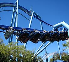 Manta, SeaWorld Orlando by coasterfan94