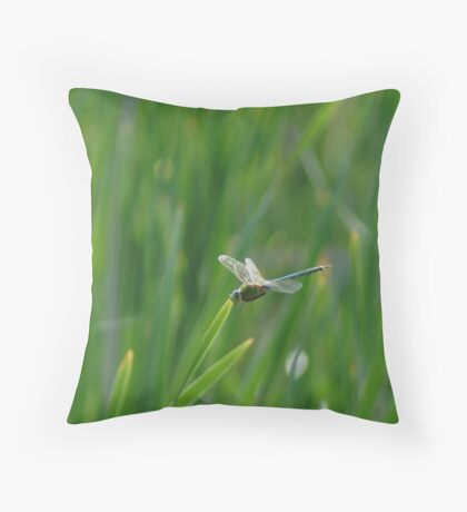 051509-19   DRAGONFLY  V Throw Pillow