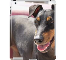 Young Manchester Terrier iPad Case/Skin