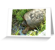051509-51 Greeting Card