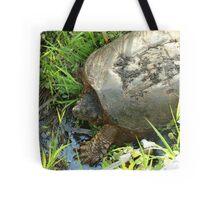 051509-51 Tote Bag