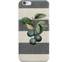 botanical stripes - plums iPhone Case/Skin
