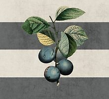 botanical stripes - plums by beverlylefevre