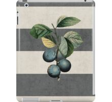 botanical stripes - plums iPad Case/Skin