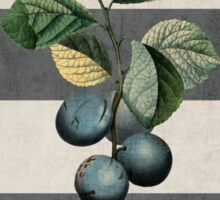 botanical stripes - plums Sticker