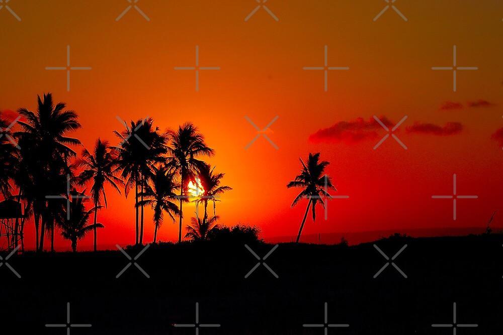 """CHERRY SUNSET"" - Mozambique --  MOSAMBIEKMOSAMBIEK by Magriet Meintjes"