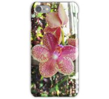 Phalaenopsis Charmer Spotted Orchid iPhone Case/Skin