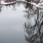Winter Repose 2 by enchantedImages