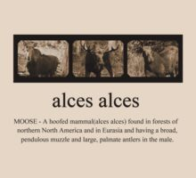 alces alces by Judith Hayes