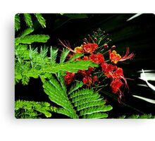 Festive Flowers Canvas Print
