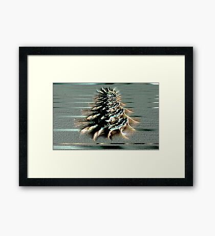 Beach Collage 3 Framed Print