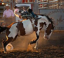 Sunset Demon Bronc by Ken McElroy