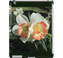 Twin Daffodils ~ iPad Case/Skin