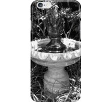 Sunken Gardens Finial Bird-bath iPhone Case/Skin