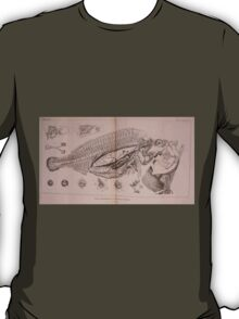 The Animal Kingdom by Georges Cuvier, PA Latreille, and Henry McMurtrie 1834  209 - Pisces Fish T-Shirt