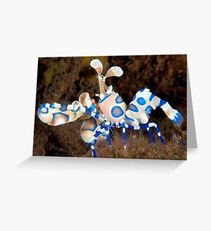 Harlequin March Greeting Card