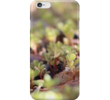 Rocky Outcrop iPhone Case/Skin