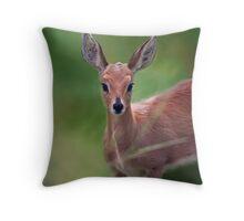 Doe Eyed Throw Pillow