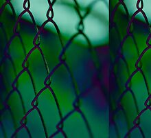Fence by Naelle Devannah