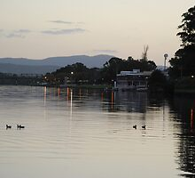 Dusky Taree by Graham Mewburn
