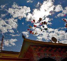 Buddha's Birthday Balloons by Rene Edde