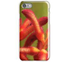 Kangaroo Paw iPhone Case/Skin