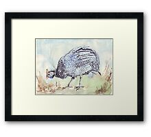 Listen to the Guinea Fowl Framed Print