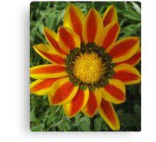 Spokes, yellow and orange. Canvas Print
