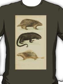 The Animal Kingdom by Georges Cuvier, PA Latreille, and Henry McMurtrie 1834 608 - Mammalia Mammals T-Shirt