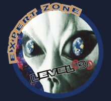 Expert Zone Space Level 3 (2) by artguy24