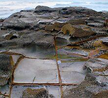 Shelly Beach by Tony Gates
