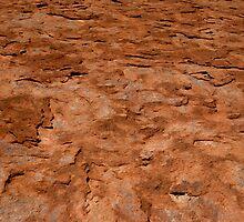 Uluru Detail by deltagphoto