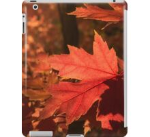 Autumn leaves in the fading light iPad Case/Skin