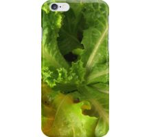 Fresh Organic Lettuce iPhone Case/Skin