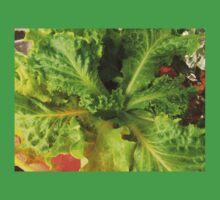 Fresh Organic Lettuce One Piece - Short Sleeve