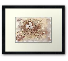 Eggs with a conscience Framed Print