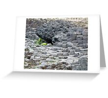 Giants Causeway 2 Greeting Card