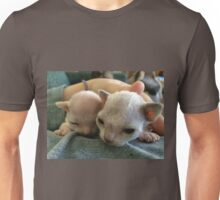Tiny Sphynx and Rex Kittens Unisex T-Shirt