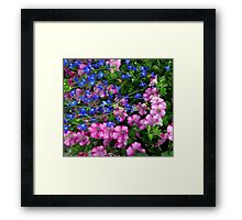 Celebration... Framed Print
