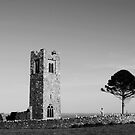 Slane Abbey by Martina Fagan