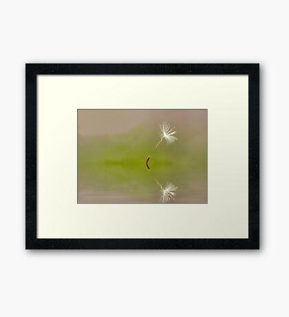 Lone Dancer Framed Print