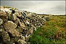 Stone Wall by CJTill