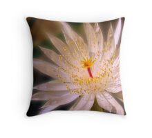 The queen of one night Throw Pillow