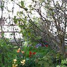 I had a dream about a garden ... by delfinada