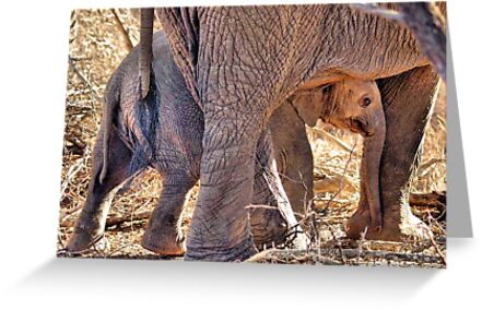 MOTHER AND CHILD by Magriet Meintjes
