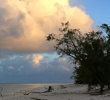 Aldabra Atoll at dawn by Gina Ruttle  (Whalegeek)