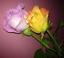Flowers by Terri-Leigh Stockdale