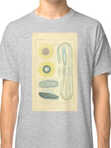 The Animal Kingdom by Georges Cuvier, PA Latreille, and Henry McMurtrie 1834  553 - Zoophytes Plant-Like Animals Classic T-Shirt